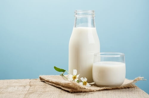 can gerbils drink milk?