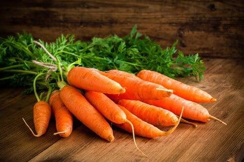 can gerbils eat carrots?