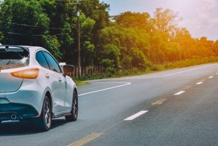 can gerbils travel in car?
