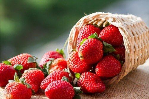 do gerbils like strawberries?
