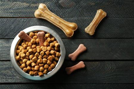 can gerbils eat dog food?