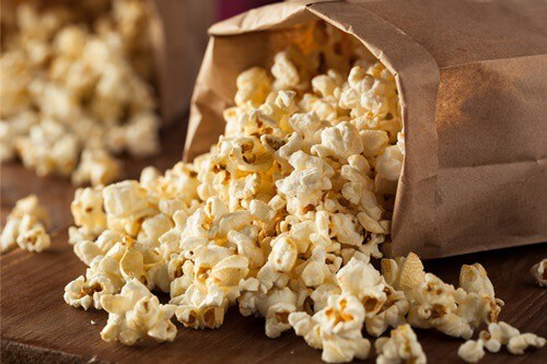 feeding gerbils popcorn