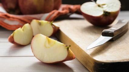 do gerbils like apples?