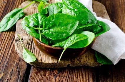 do gerbils like spinach?